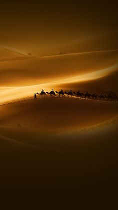 Desert Wallpapers HD - Android Apps on Google Play
