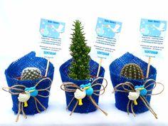 Cactus Y Suculentas, Hanukkah, Baby Shower, Wreaths, Bags, Santiago, Animals Of The Rainforest, Souvenirs, Plants