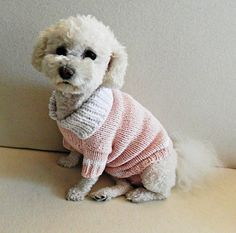 Dog Clothes T-shirt dog sweater Cotton dog sweater