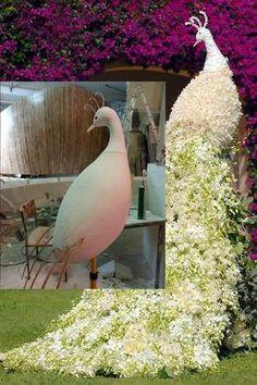 цветочный павлин - Поиск в Google