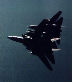 """flight-time: """" Two of 'em """" F14 Tomcats"""