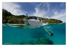 Dive Fiji: This one is on my bucket list