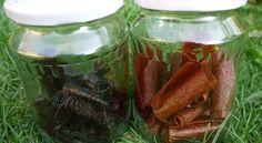 Homemade Jelly, Home Canning, Pickles, Cucumber, Mason Jars, Med, Hana, Homemade Jello, Canning