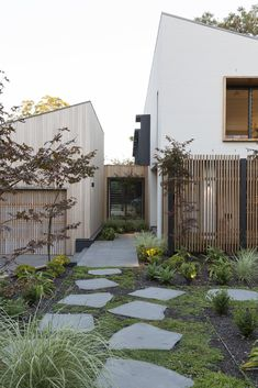 Garden House by James Design Studio - Central Courtyard Architecture - The Local Project Courtyard Landscaping, Courtyard Design, Courtyard House, Garden Design, Design Studio, Casa Patio, Internal Courtyard, Design Exterior, Small Courtyards
