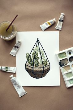 House Plant Portrait No. 4 — Terrarium