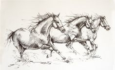 Charcoal running horses drawing equine art horse by AndreiGrimberg