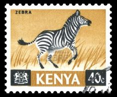 Picture of Ghana Africa postage stamp showing an image of an African zebra stock photo, images and stock photography. African Theme, African Art, Commemorative Stamps, Postage Stamp Art, African Animals, African Design, East Africa, Stamp Collecting, Digital Stamps