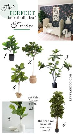 Best Faux Tree for Y