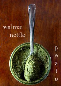 walnut nettle pesto by Salt Fat Whiskey