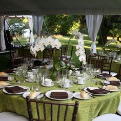 Green and brown wedding reception table | Green crinkle taffeta tablecloth mahogany chiavari chairs orchid centerpiece
