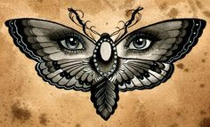 Butterfly Eyes by Thea Fear Blue Eyed Insect Surreal Canvas Art Print