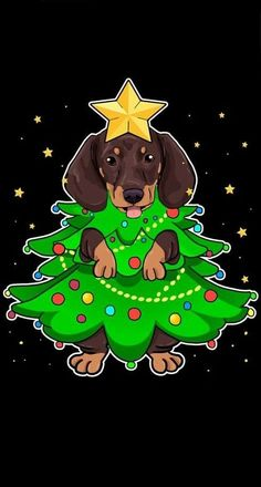 Pug, Dachshund Art, Dachshund Puppies, Daschund, Cute Animal Pictures, Dog Pictures, Xmas Pictures, Animals And Pets, Cute Animals