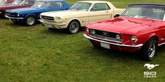 Thousands of car enthusiasts flock to Canada's largest outdoor car show to admire car culture and celebrate 50 years of Mustang.