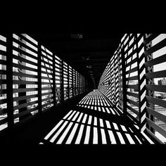 Bridge at Union Station in Kansas City, Missouri.   Black and white photography by: Camille Bryant