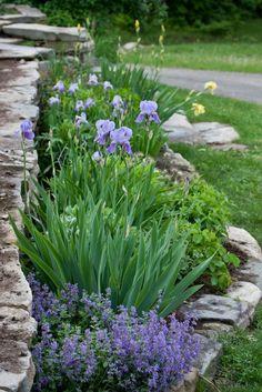 Steingarten Anlegen Und Mit Lavendel Dekorieren
