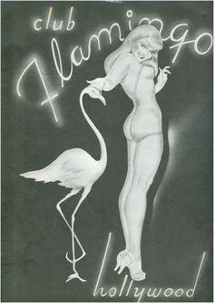 another flamingo