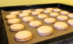 makronky recept-1 Twisted Recipes, Xmas Cookies, Cake Tutorial, Frozen Desserts, Healthy Dessert Recipes, Pavlova, Something Sweet, Macaroons, Christmas Baking