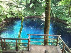 十二湖の透明な青池
