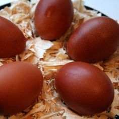 Maran's eggs. According to the French Ministry of Agriculture, Salmonella is never found in Maran's eggs because the pores in the shells are smaller than those found in the eggs of other breeds.