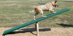 """Teeter Totter 