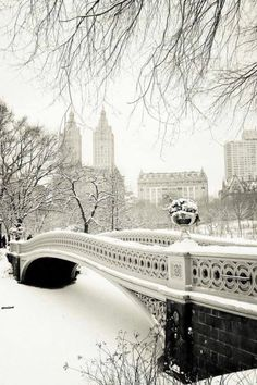 NYC covered in snow