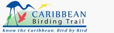 The Caribbean Birding Trail is a network of the best sites on each island in the Caribbean for birdwatching, enjoying nature and experiencing culture. Birdwatching, Best Sites, Caribbean, Trail, Birds, Island, Celebrities, Nature, Life