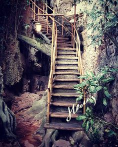The stairs to...? Part of my job is checking out venues before sending my proposal to the client. Perks like checking out new places are what makes me love my job. Plus eating. Eating makes me happy   #wanderlust #banjaranhotsprings #tambun #ipoh #workplay #malaysia #visitmalaysia #travel #travelblogger #travelgram #travelphotography #lifestyleblogger #eventconsulting #allinadayswork