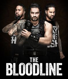 Roman Reigns & The Usos Wwe Superstar Roman Reigns, Wwe Roman Reigns, The New Day Wwe, Usos Wwe, Roman Reigns Family, Wwe Funny, Wrestling Posters, Roman Regins, Wwe Pictures