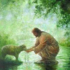 Jesus feeding his sheep