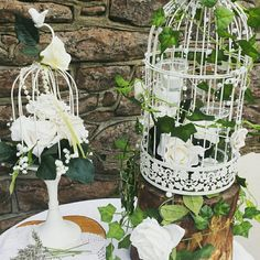 Trend for 2017, greenery birdcages