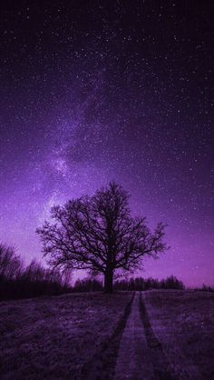 Starry sky iphone 11 wallpapers – Page 2 Black And Purple Wallpaper, Purple Wallpaper Phone, Iphone Wallpaper Sky, Cute Galaxy Wallpaper, Night Sky Wallpaper, Dark Wallpaper, Purple Aesthetic Background, Dark Purple Aesthetic, Aesthetic Pastel Wallpaper