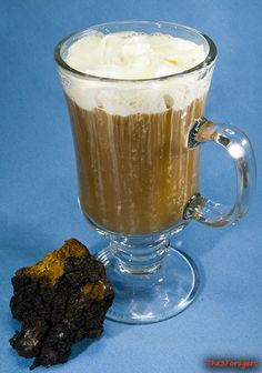 The 3 Foragers: Foraging for Wild, Natural, Organic Food: Chaga Recipe: Chaga Frappé Recipe