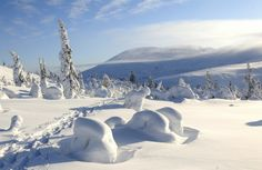 Pallastunturi are little mountains in Lapland, at the north of Finland. Start Of Winter, Winter Time, Seasons Of The Year, Winter Beauty, Winter Snow, Finland, Skiing, Beautiful Places, Explore
