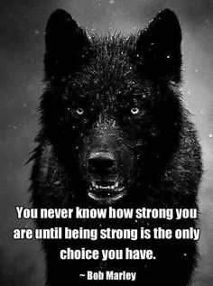 You never know how strong you are until being strong is the only choice you have. - Bob Marley