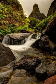 Iao Valley Needle - Maui -   The most notable structure in the park is without a doubt the rather phallic Iao Needle.  It is said to be the result of millennia of water pressure eroding volcanic rock, and it pokes out from the side of the valley, standing over 2000 ft. tall.
