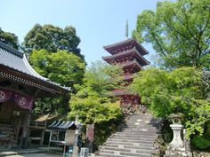Chikurinji (Temple 31) on the mountain of Godaisan. This temple is adjacent to the Makino Botanical Gardens which serve as a de facto extension of the temple grounds.
