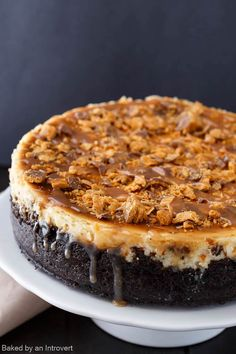 BUTTERFINGER® candy bars + cheesecake = a match made in dessert heaven! Indulge in the delicious taste of Butterfinger Cheesecake with Caramel Drizzle at your next holiday party. Filled and topped wit (Home Made Chocolate Pie) Food Cakes, Cupcake Cakes, Cupcakes, Butterfinger Cheesecake, Homemade Cheesecake, Caramel Cheesecake, Cheesecake Bars, Turtle Cheesecake Recipes, Pumpkin Cheesecake
