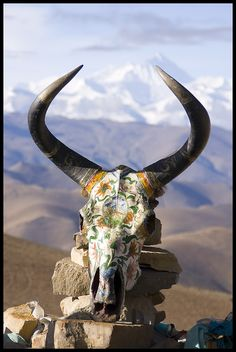 Decorated skull, Tibet--a reminder that all is impermanent & death comes to us all.