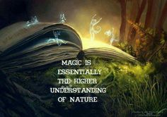 Magic is essentially the higher understanding of nature.