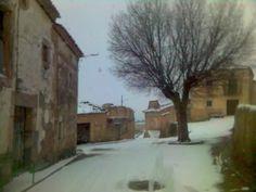 Plaza de Torremocha de Ayllón con el antiguo olmo