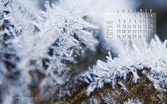 Evamar Fotografía: Calendario de enero de 2015 (regalito)