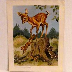 Vintage Deer, Chipmunks, and Rabbit Poster