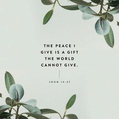 Why We Lose Our Peace - The Mindfulness Momma John 14 27, Faith Quotes, Bible Quotes, Bible Verses, Prayer Scriptures, Common English Bible, Pray For Peace, New American Standard Bible, Emotional Rollercoaster