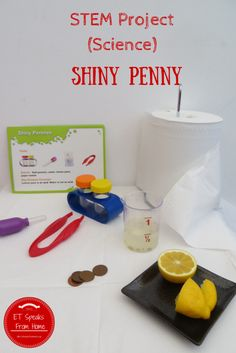 Shiny Penny – STEM Science Project - ET Speaks From Home