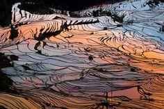 Honghe Hani Rice Terraces - #Unesco