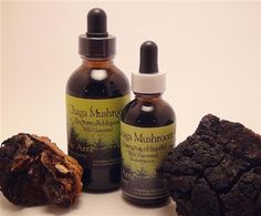 High-quality Chaga product available at best possible prices! at My Healthy Outlet ,  Instant Chaga,#‎Chaga_Mushroom‬ tincture and more