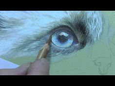 Watch Colin draw this stunning eye using Pastel Pencils. Watch the full 3 hour tutorial on Colin's website: http://www.colinbradleyart.co.uk For Starter Pack...
