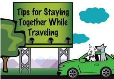 Traveling with your pets could turn into a catastrophe if your dog or cat were lost. These tips will help you stay to together while you're away from home!