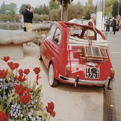 old fiat 500 flower - Cerca con Google