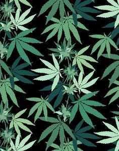 Cannabis Wallpaper - Onyx - Wallshoppe